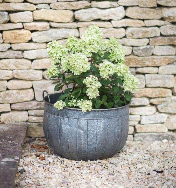 shilton planter large